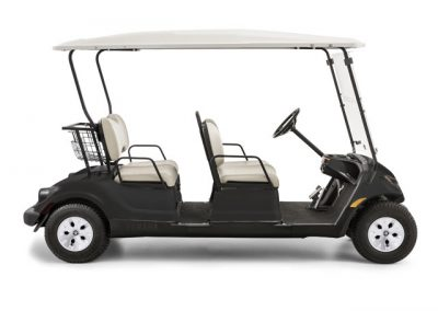 Concierge 6-Passenger Golf Car for Sale Launceston